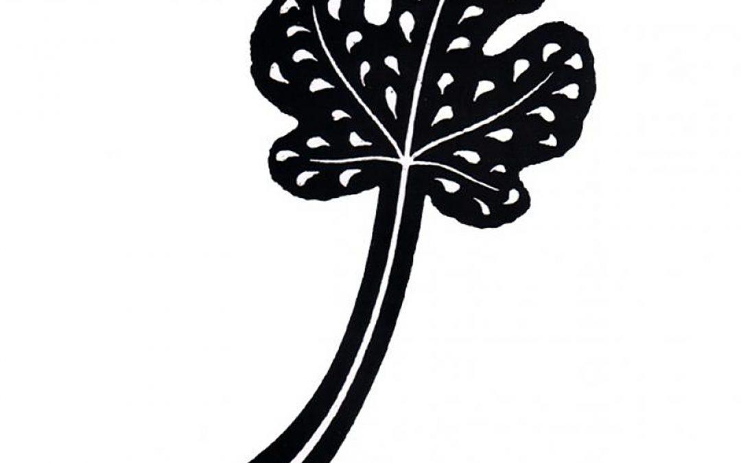 Grote Vijgeboom